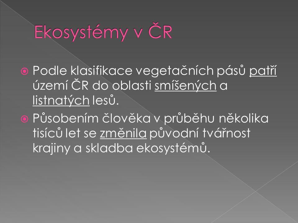 Ekosystémy v ČR Podle klasifikace vegetačních pásů patří území ČR do oblasti smíšených a listnatých lesů.