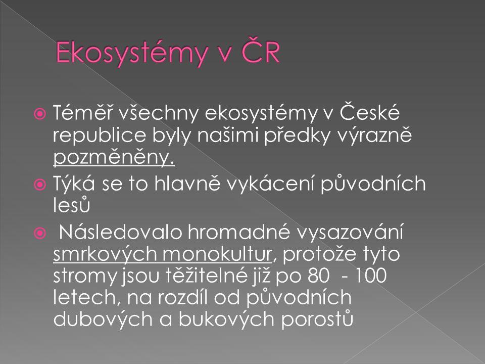 Ekosystémy v ČR Téměř všechny ekosystémy v České republice byly našimi předky výrazně pozměněny. Týká se to hlavně vykácení původních lesů.