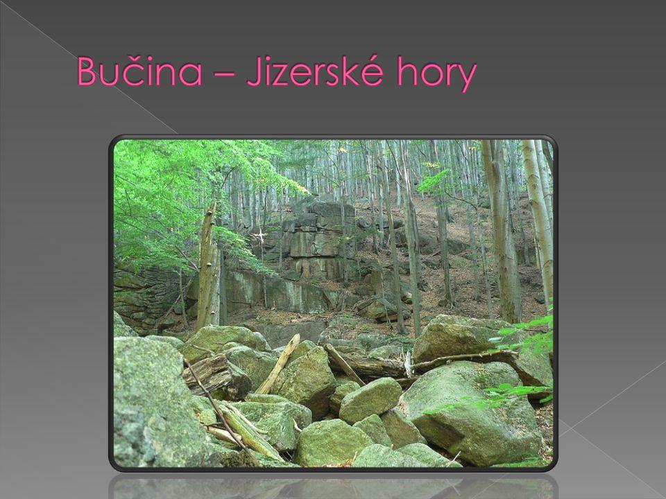 Bučina – Jizerské hory