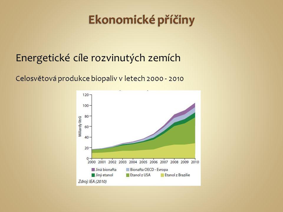Ekonomické příčiny Energetické cíle rozvinutých zemích