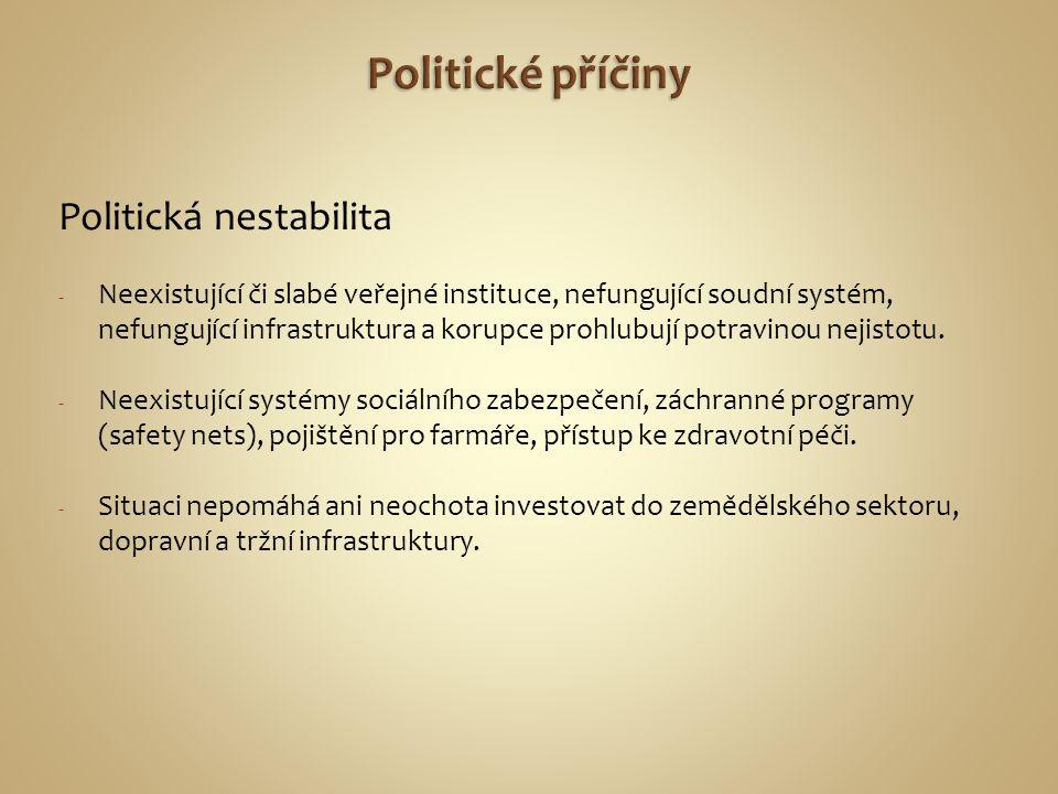 Politické příčiny Politická nestabilita