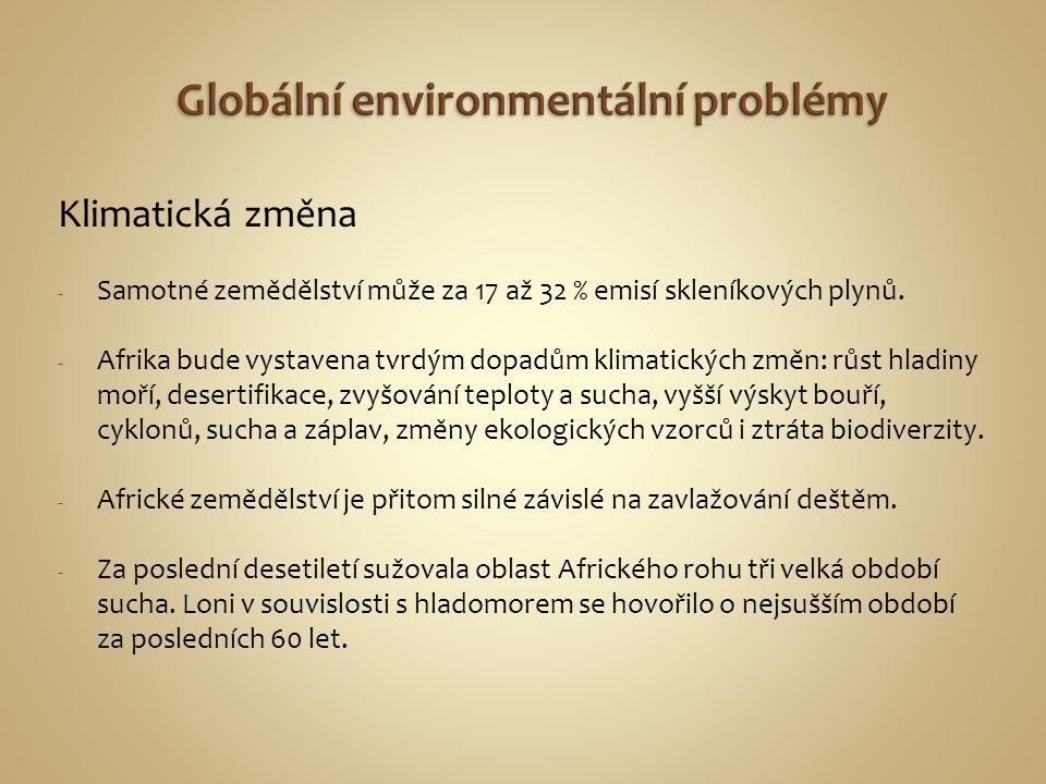Globální environmentální problémy