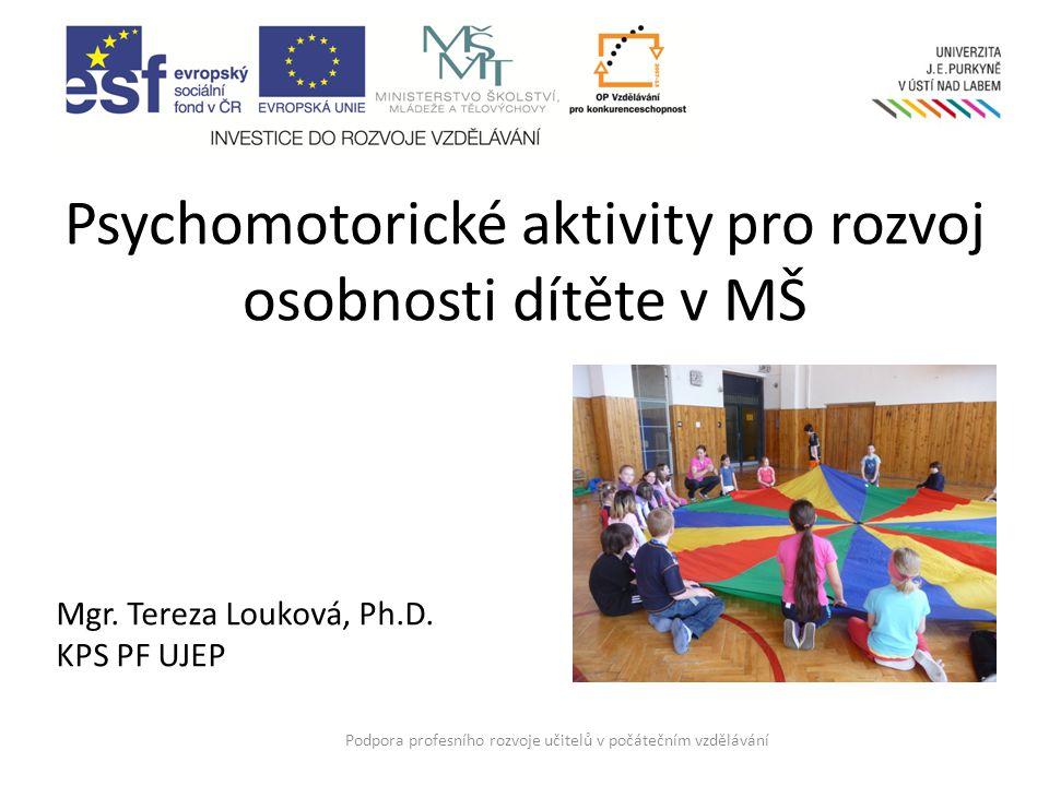 Psychomotorické aktivity pro rozvoj osobnosti dítěte v MŠ