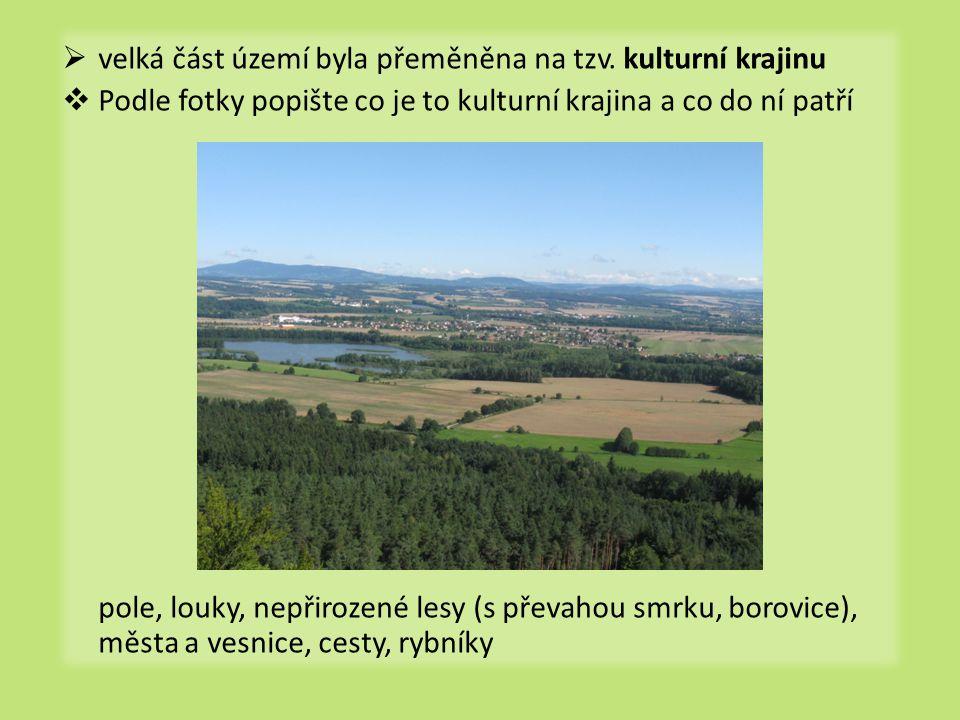 velká část území byla přeměněna na tzv. kulturní krajinu