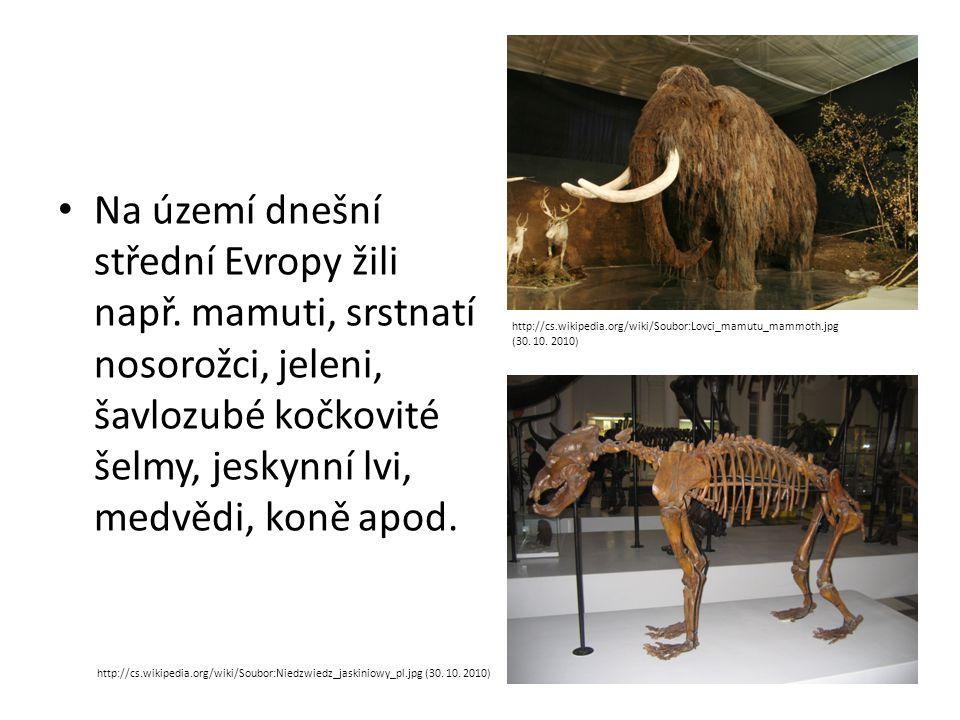 Na území dnešní střední Evropy žili např