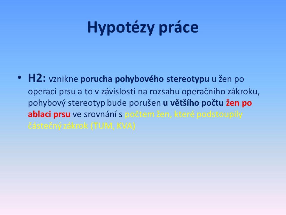 Hypotézy práce