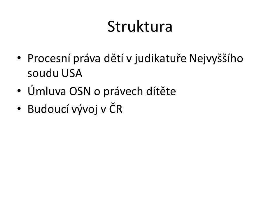 Struktura Procesní práva dětí v judikatuře Nejvyššího soudu USA