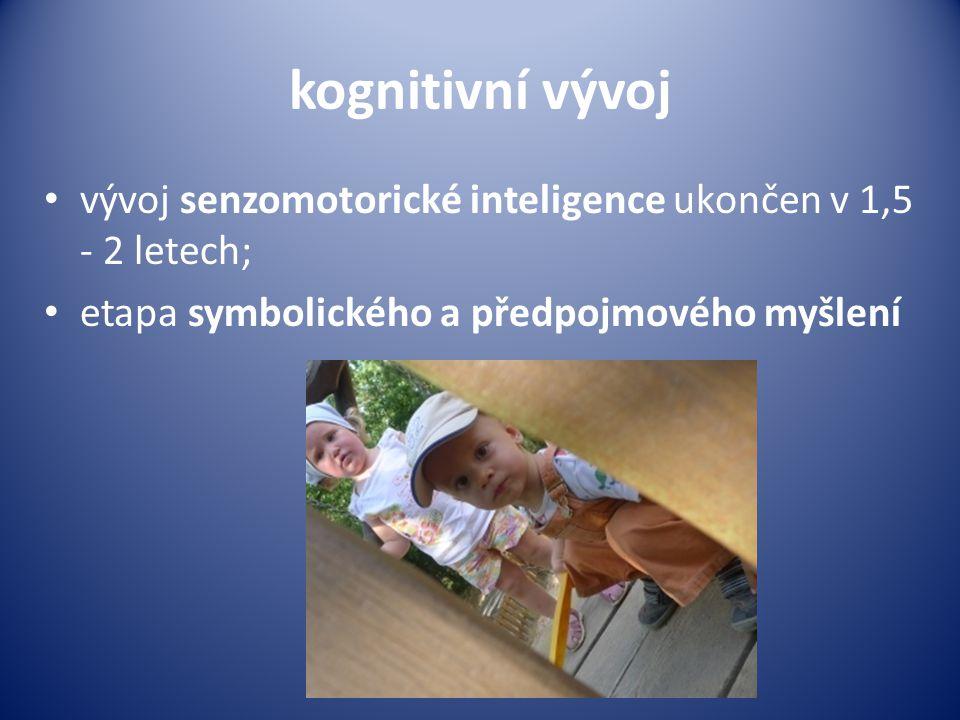 kognitivní vývoj vývoj senzomotorické inteligence ukončen v 1,5 - 2 letech; etapa symbolického a předpojmového myšlení.