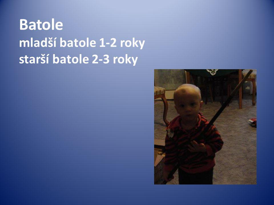 Batole mladší batole 1-2 roky starší batole 2-3 roky
