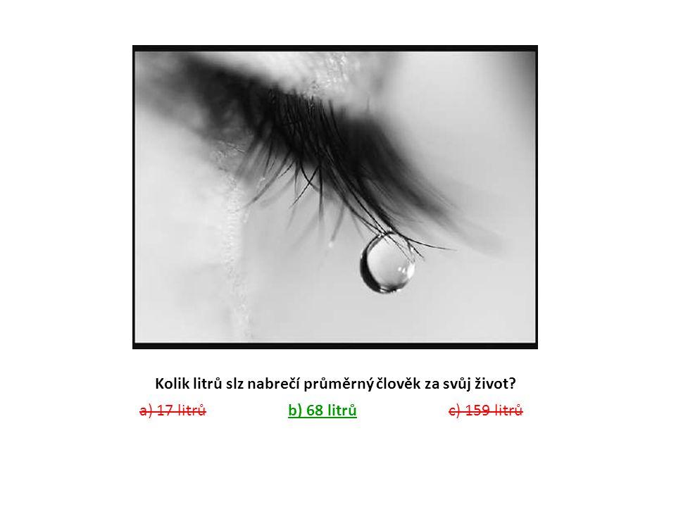Kolik litrů slz nabrečí průměrný člověk za svůj život