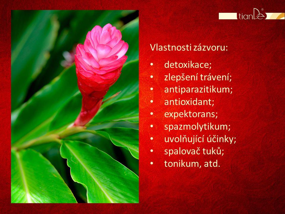 Vlastnosti zázvoru: detoxikace; zlepšení trávení; antiparazitikum; antioxidant; expektorans; spazmolytikum;
