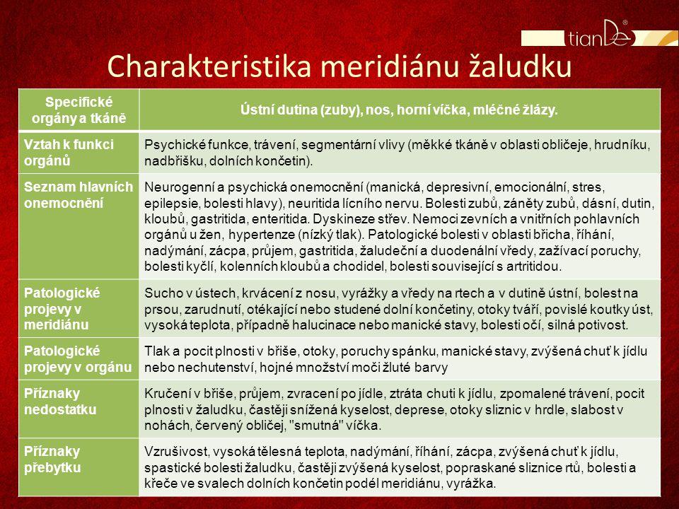 Charakteristika meridiánu žaludku