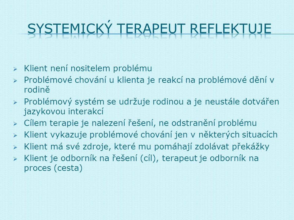 SysTEMICKÝ TERAPEUT REFLEKTUJE