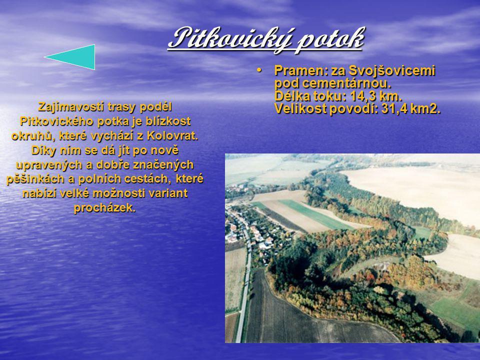 Pitkovický potok Pramen: za Svojšovicemi pod cementárnou. Délka toku: 14,3 km. Velikost povodí: 31,4 km2.