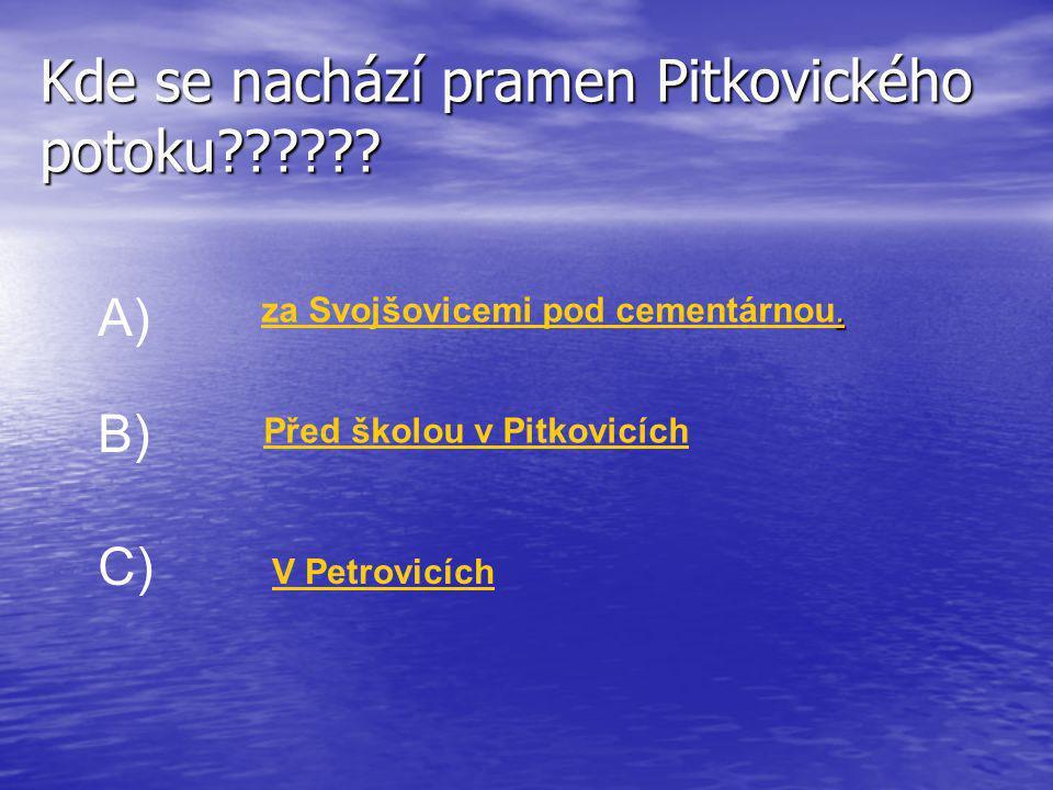Kde se nachází pramen Pitkovického potoku