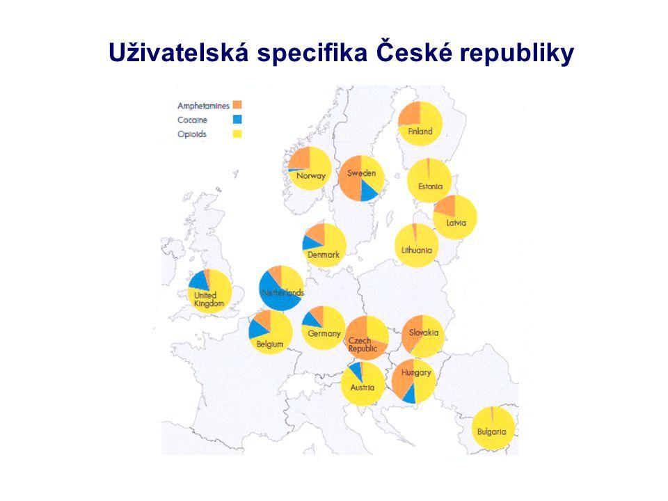Uživatelská specifika České republiky