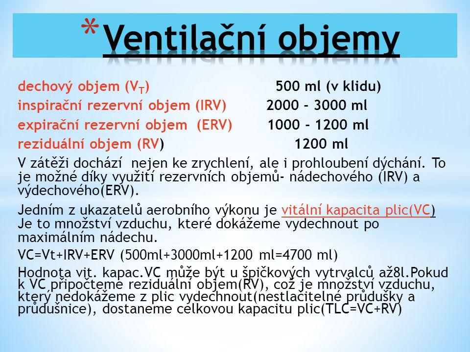 Ventilační objemy dechový objem (VT) 500 ml (v klidu)