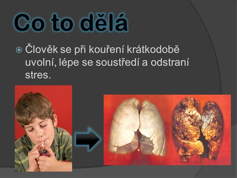 Co to dělá Člověk se při kouření krátkodobě uvolní, lépe se soustředí a odstraní stres.