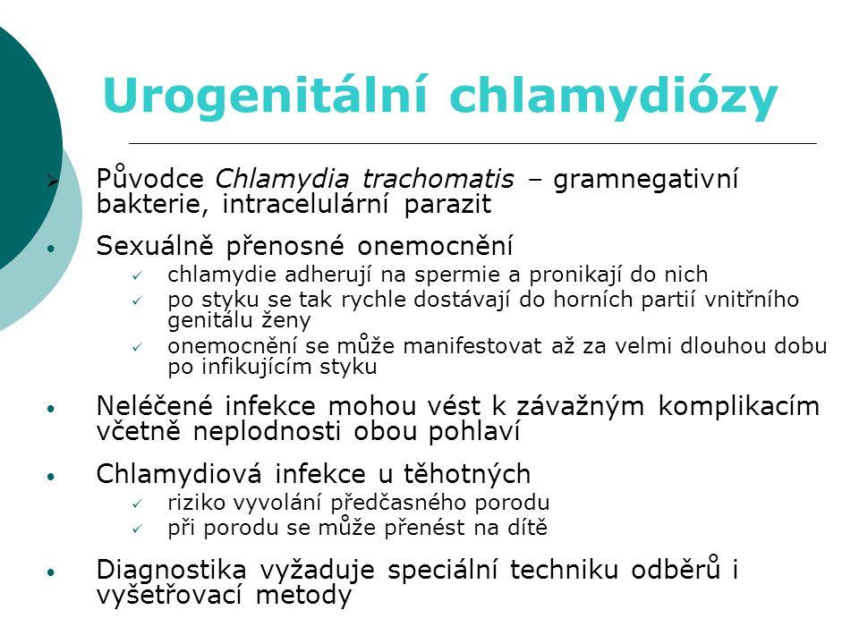 Urogenitální chlamydiózy