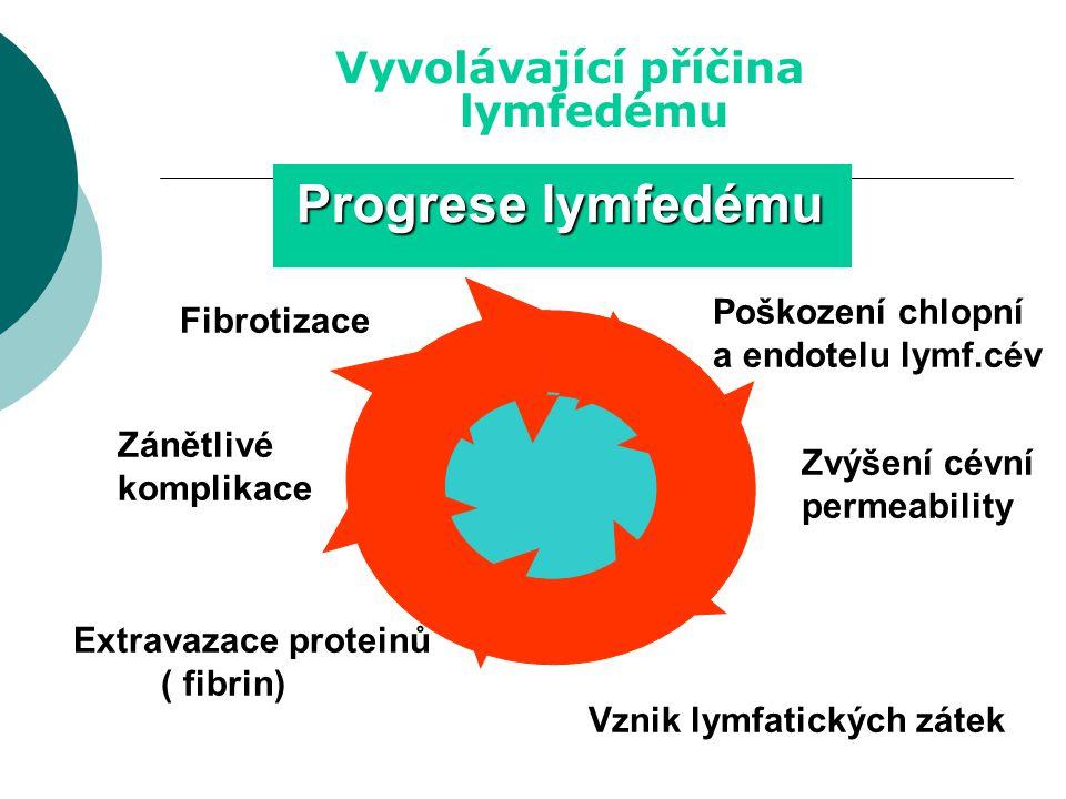 Progrese lymfedému Lymfostáza lymfedému Vyvolávající příčina