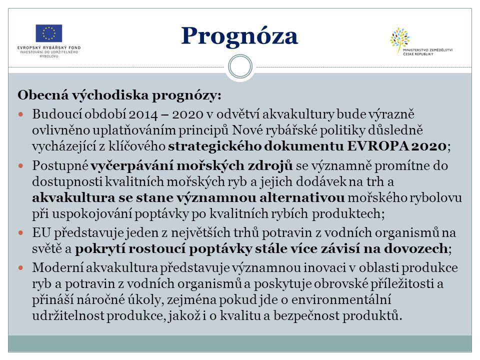 Prognóza Obecná východiska prognózy: