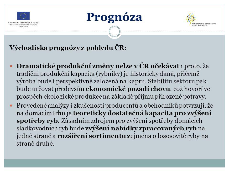 Prognóza Východiska prognózy z pohledu ČR: