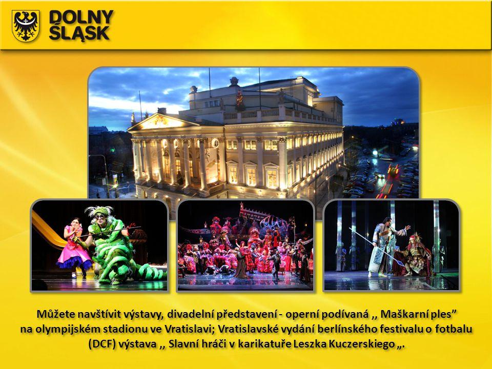 Můžete navštívit výstavy, divadelní představení - operní podívaná ,, Maškarní ples