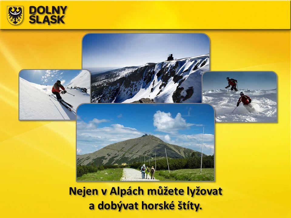 Nejen v Alpách můžete lyžovat a dobývat horské štíty.