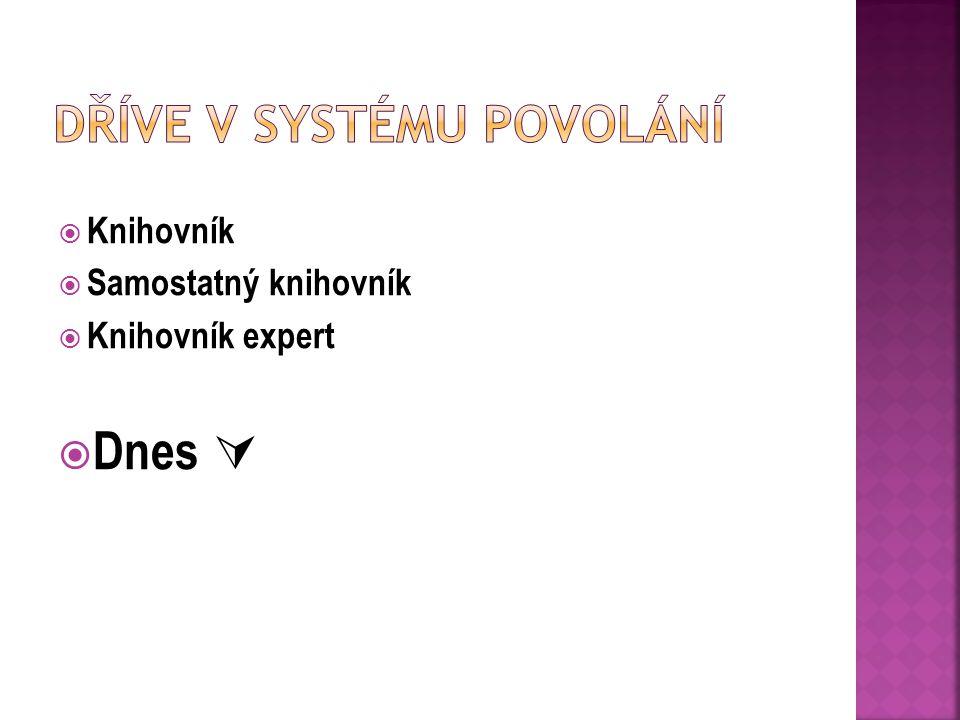 Dříve v Systému povolání