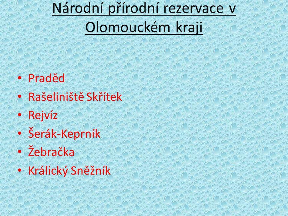 Národní přírodní rezervace v Olomouckém kraji