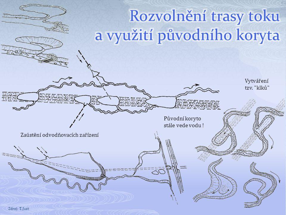 Rozvolnění trasy toku a využití původního koryta