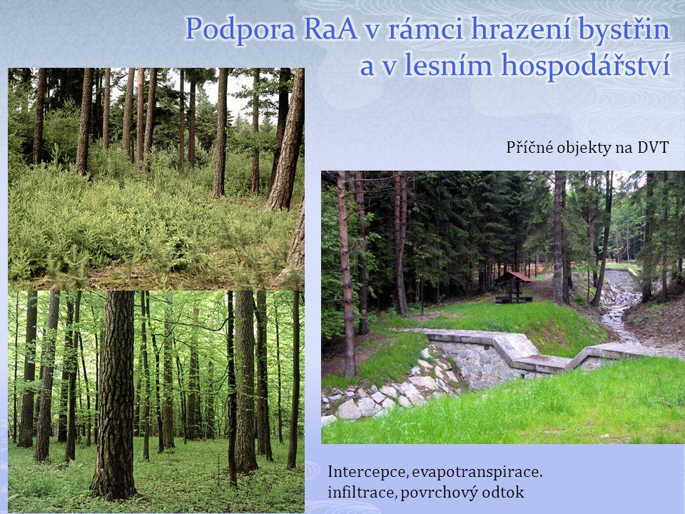 Podpora RaA v rámci hrazení bystřin a v lesním hospodářství