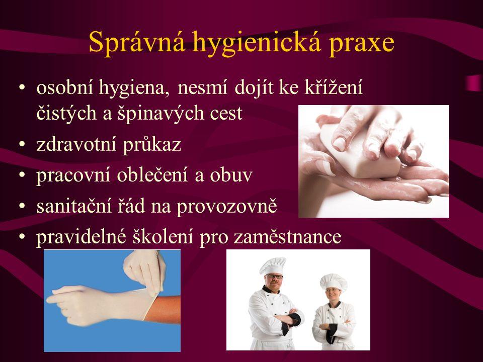 Správná hygienická praxe