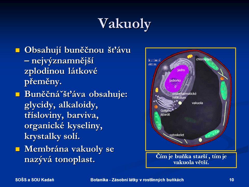 Vakuoly Obsahují buněčnou šťávu – nejvýznamnější zplodinou látkové přeměny.