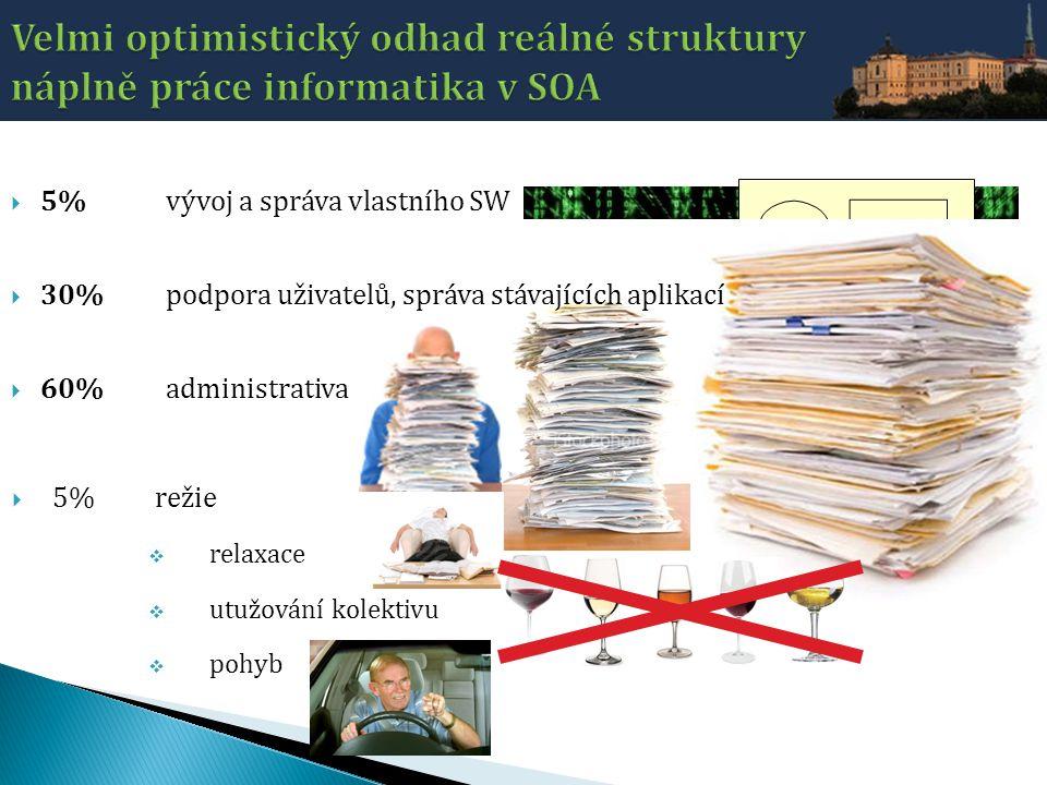 Velmi optimistický odhad reálné struktury náplně práce informatika v SOA
