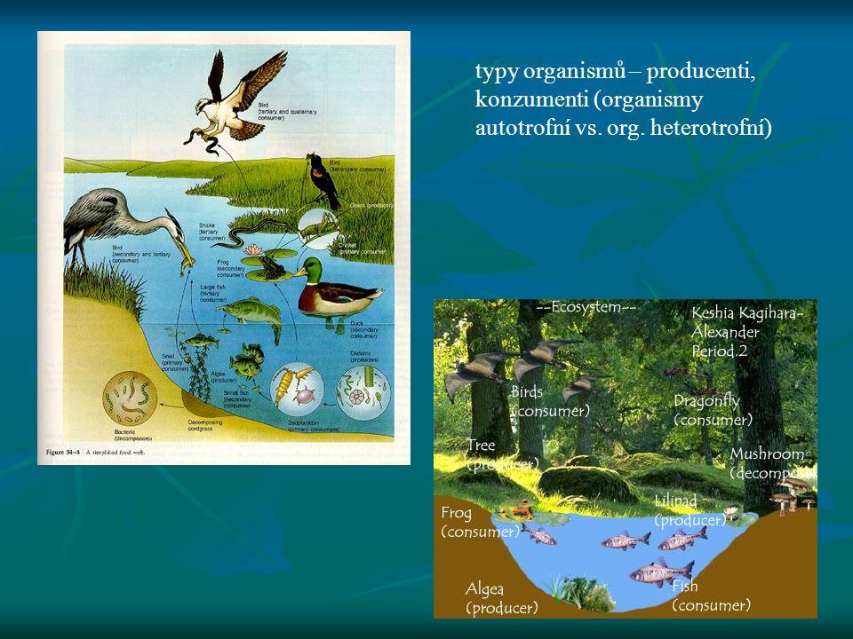 typy organismů – producenti, konzumenti (organismy autotrofní vs. org
