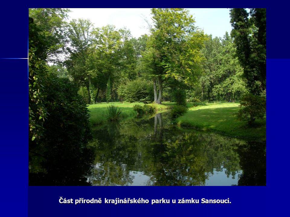 Část přírodně krajinářského parku u zámku Sansouci.