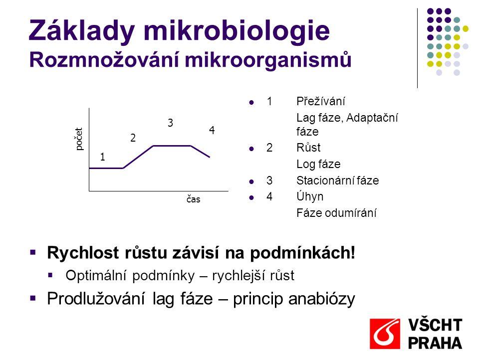 Základy mikrobiologie Rozmnožování mikroorganismů