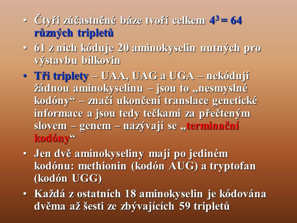 Čtyři zúčastněné báze tvoří celkem 43 = 64 různých tripletů