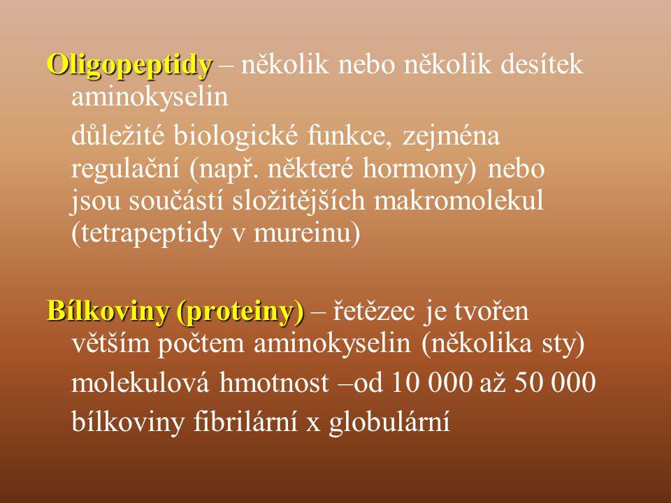 Oligopeptidy – několik nebo několik desítek aminokyselin