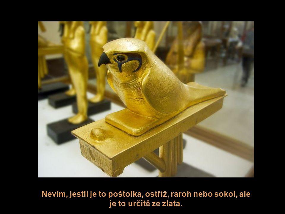 Nevím, jestli je to poštolka, ostříž, raroh nebo sokol, ale je to určitě ze zlata.