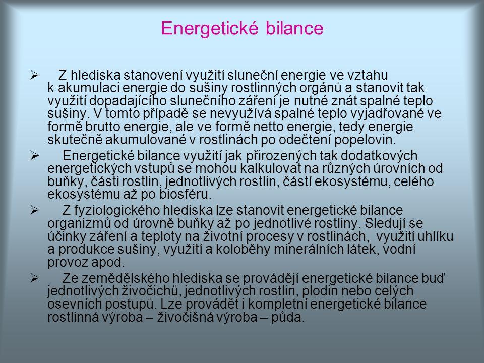 Energetické bilance
