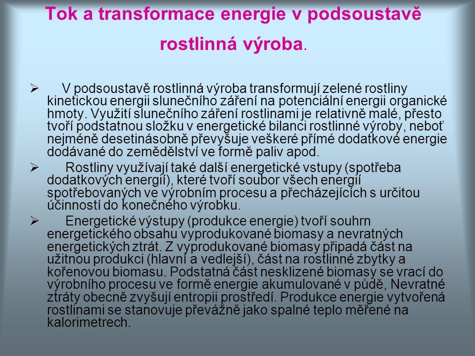 Tok a transformace energie v podsoustavě rostlinná výroba.
