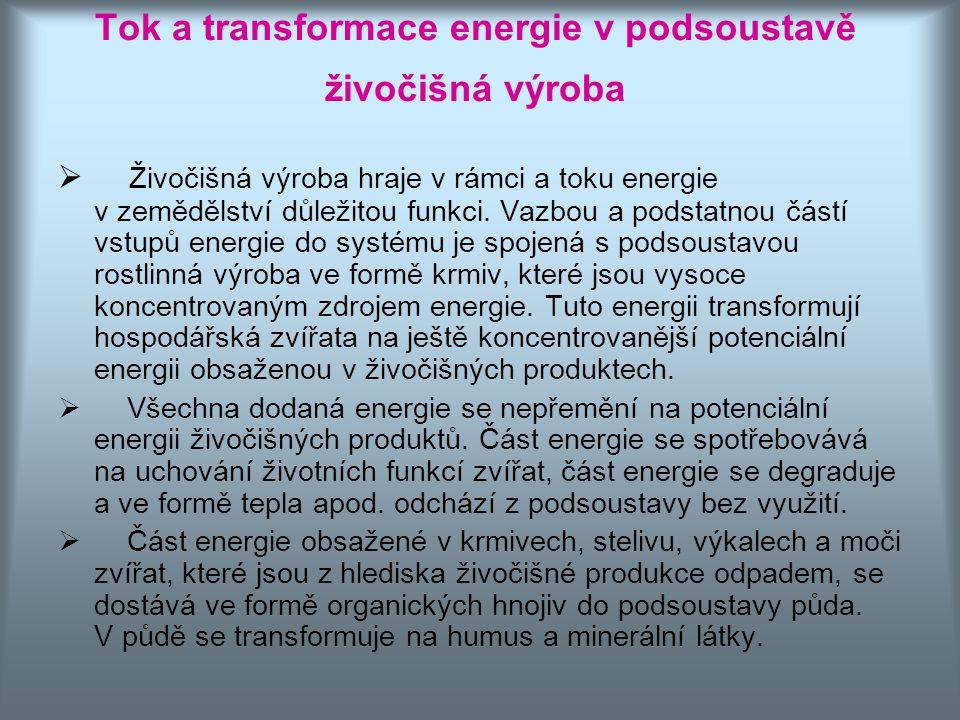 Tok a transformace energie v podsoustavě živočišná výroba