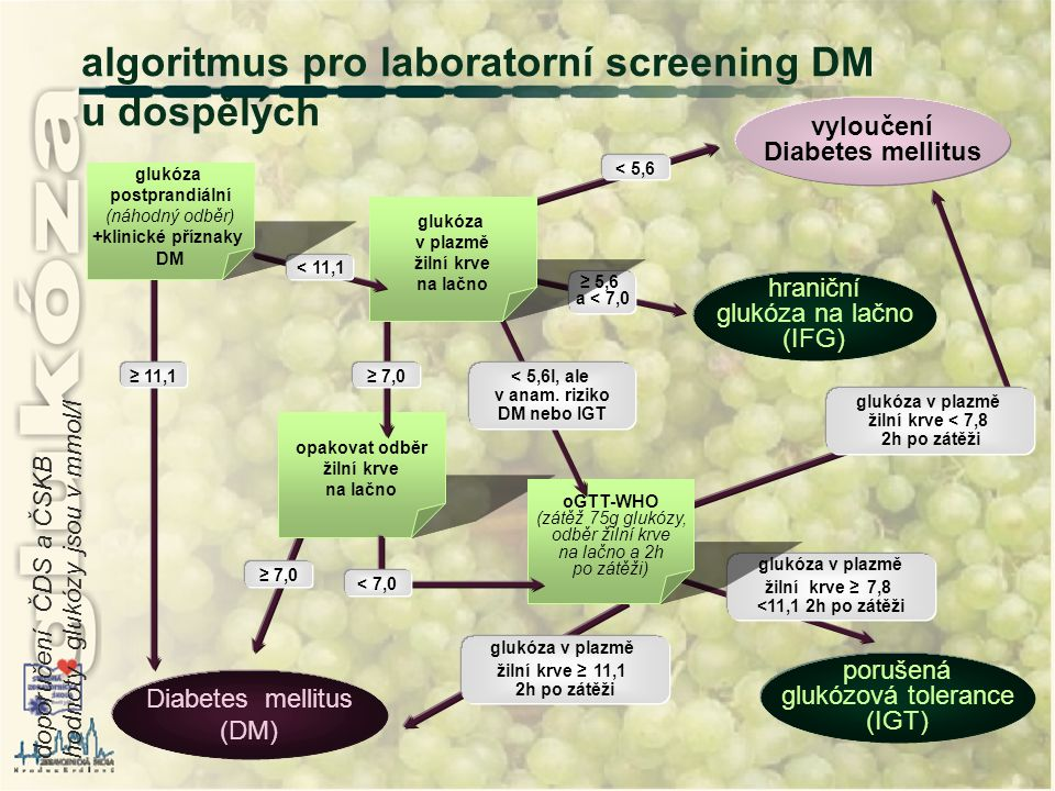 algoritmus pro laboratorní screening DM u dospělých