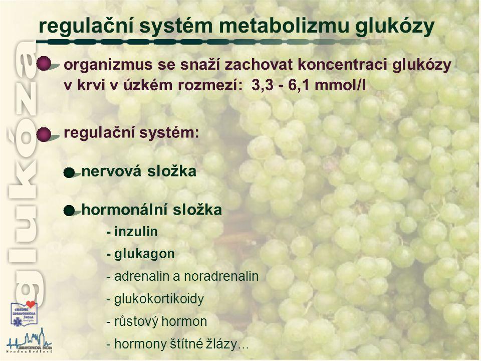 regulační systém metabolizmu glukózy