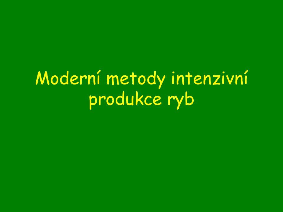 Moderní metody intenzivní produkce ryb