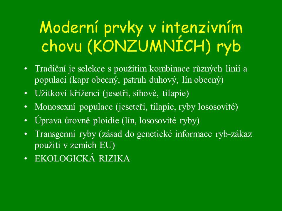Moderní prvky v intenzivním chovu (KONZUMNÍCH) ryb