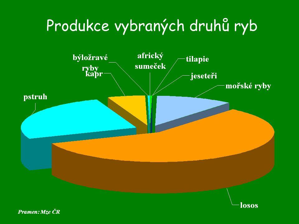 Produkce vybraných druhů ryb