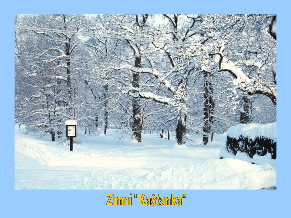 Zimní Kaštanka